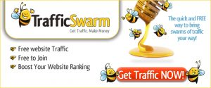 TrafficSwarm Am Getting 100 Clicks From 300 Credits