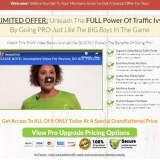 get traffic ivy by cindy donovan