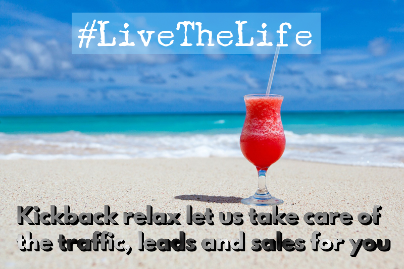we drive traffic generate leads and sales for you
